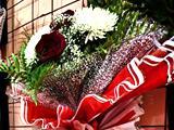Салон цветов, магазин